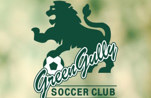 Green Gully NPL Header