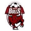 tcf_logo_fc_banyule_city_bulls