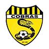 tcf_logo_fc_caulfield_united_cobras